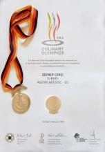 IKA CULINARY OLYMPICS (THE GERMANY)  STUTGART FEBRUARY-2020